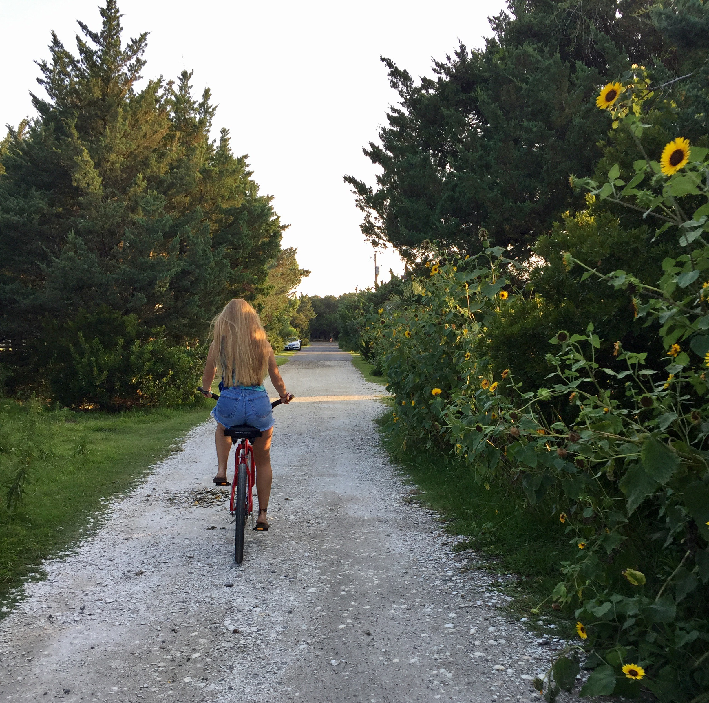 Biking on Ocracoke Island